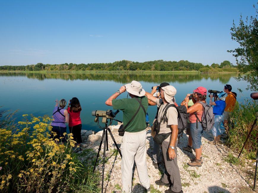 Le lac de Rillé à RILLE © Drois réservés