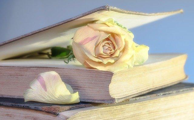 Autour du livre à JARGEAU © pixabay