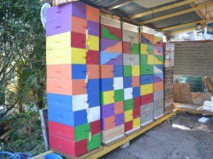 La belle affaire, visite du Rucher des terres chaudes à CINQ-MARS-LA-PILE - 6  © le rucher des terres chaudes
