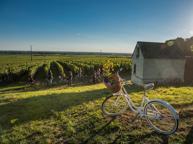 Syndicat des vins de Saint Nicolas de Bourgueil à SAINT-NICOLAS-DE-BOURGUEIL ©  David Darrault