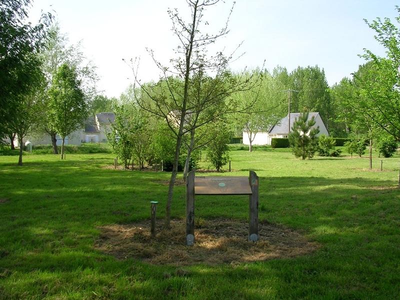 Sentier d'interprétation de Gizeux : «L'arbre, des racines à la cime» à GIZEUX ©  Communauté de communes du Pays de Bourgueil