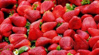 strawberries-99551-1280