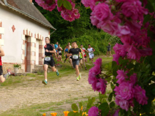 Week-end Sport Nature Bourgueillois : Trail «Les Grands 20 de Bourgueil» à BOURGUEIL - 2  ©  Sport Nature Bourgueillois
