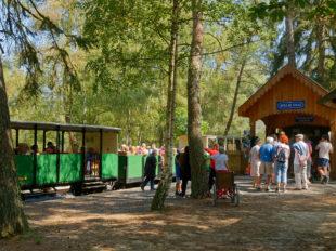 Train à vapeur de Rillé à RILLE - 2  ©  aecfm