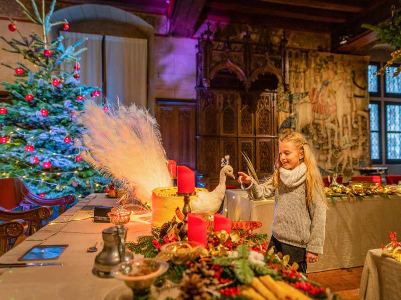 Noël de lumières à LANGEAIS © ADT Touraine / Jean-Christophe Coutand