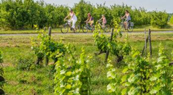 vignes-vélo-chateaux