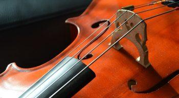 violoncelle-OTTN-2019