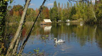 L'étang du camping la Grande Sologne